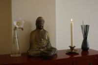 Vipassana Haarlem - Meditatiedag